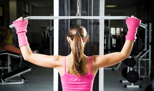 Krank Systems: 6 or 12 Boot-Camp Classes at Krank Systems (Up to 66% Off)