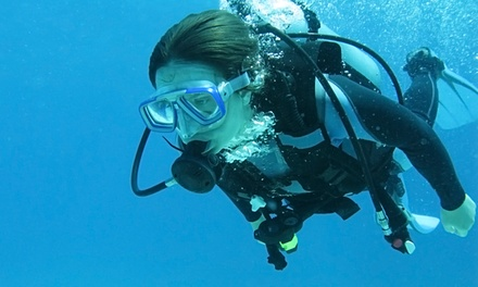 One-Week Full-Certification Diving Course or Tropical Referral Class at Scuba Shoppe (Up to 54% Off)