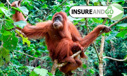 20% Off Travel Insurance from InsureandGo with Policies Available from $22*