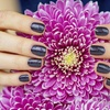 Up to 55% Off Shellac Manicures at Nails by Mindy