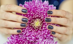 Pretty Patrol Salon: Shellac No-Chip Manicures at Pretty Patrol Salon LLC (Up to 53% Off). Two Options Available.