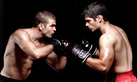 $39 for One Month of MMA Classes and Gym Access at MMA World ($100 Value)
