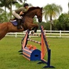 53% Off at Vantage Point Equestrian