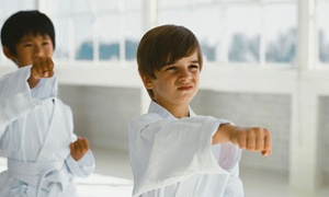 Master Pierce's Taekwondo: One or Two Months of Taekwondo Lessons at Master Pierce's Taekwondo (Up to 80% Off)