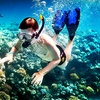 Up to 58% Off Snorkeling or Marine-Life Tour