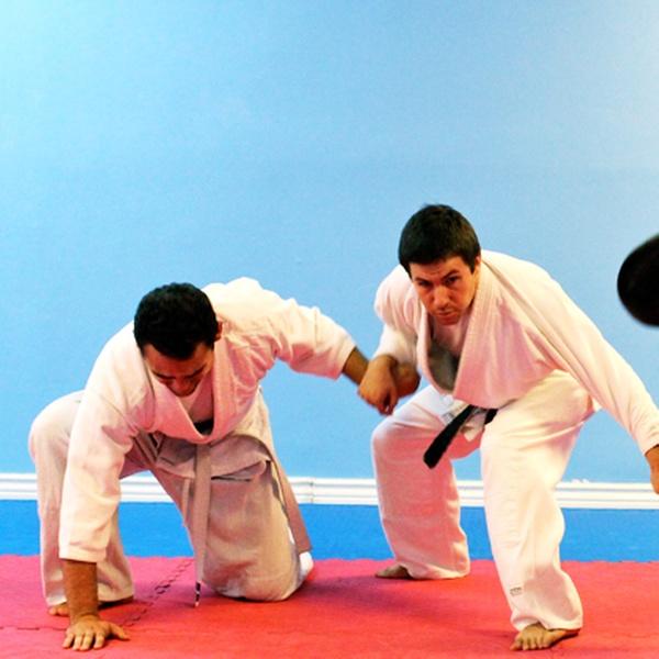 How To Get A Martial Arts Body