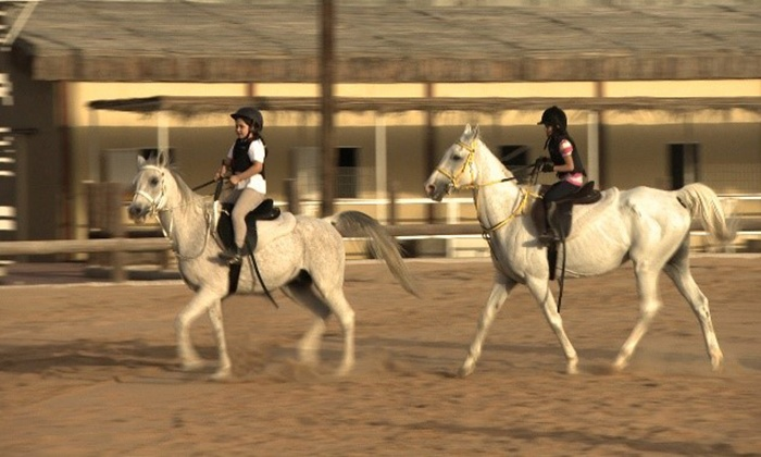 Horse Riding Lessons Royal Equestrian Club Groupon