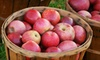 PieTree Orchard - Downtown Lewiston: $15 for $30 Worth of Pick-Your-Own Apples, Pumpkins, and Foods at PieTree Orchard