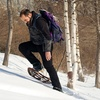 Up to 48% Off Guided Snowshoe Tour