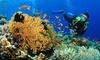 R.SUB - R.Sub: Corso Padi Discover Scuba Diving per una, 2 o 4 persone con R.Sub (sconto fino a 86%)