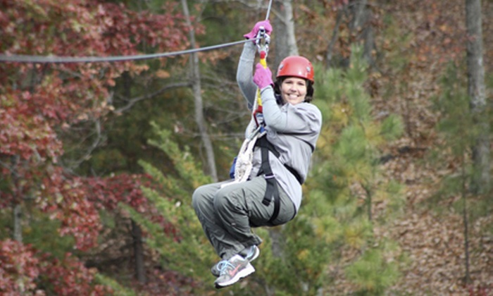 Lake Lanier Canopy Tours - Buford: $46 for a 2.5-Hour Legacy Deluxe Zipline Tour of the Canopy Plus T-Shirt from Lake Lanier Canopy Tours ($95 Value)