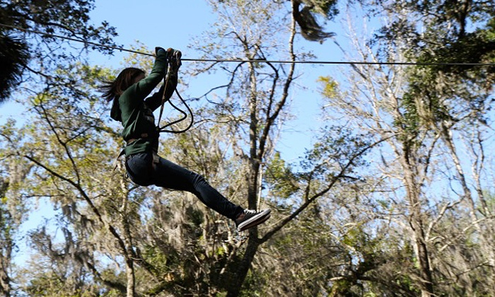 Zoom Air Adventure Park - Central Florida Zoo: Ziplining and Aerial Adventure Experience for Two or Four at Zoom Air Adventure Park (Up to 48% Off)
