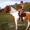 Up to 56% Off Horseback-Riding Lessons or Camp