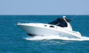 Skysail: Licencja na holowanie (329,99 zł), kurs sternika motorowodnego (399,99 zł) i więcej w Skysail (do -36%)
