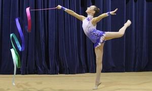 Rhythmic Academy Of Los Angeles: $109 for $205 Worth of Gymnastics — Rhythmic Academy of Los Angeles