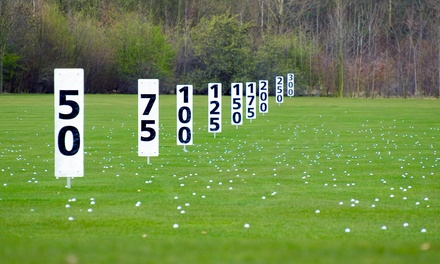 $129 for $250 Worth of Annual Golf Range Pass at Boise Ranch Golf Course