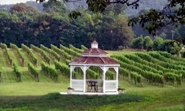 Miracle Valley Vineyard - Delaplane: Winery Tour for Two or Four with Food Platter, Glasses, and Gift-Shop Credit at Miracle Valley Vineyard (Up to 58% Off)