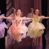 """""""The Nutcracker"""" at the Civic Theatre – Up to 69% Off Ballet"""