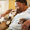 $10 Donation to Feed Homebound Seniors' Pets
