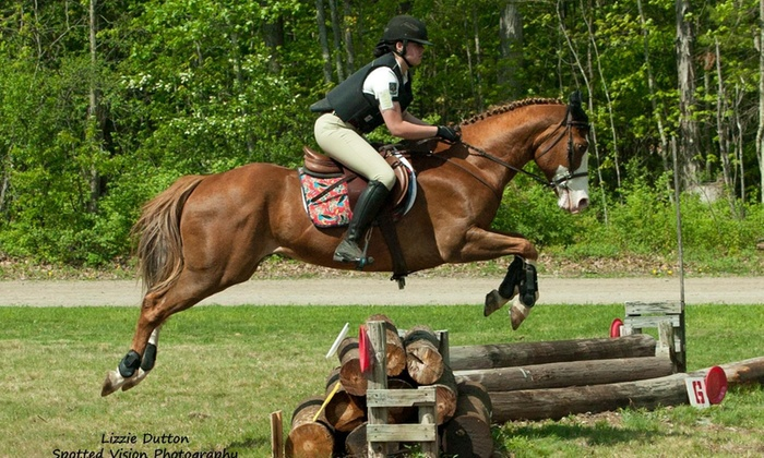 Fairview Farms Jjc - Brimfield: $40 for $85 Worth of Horseback Riding — Fairview Farms Jjc