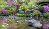 Anderson Japanese Gardens – Up to Half Off Entry