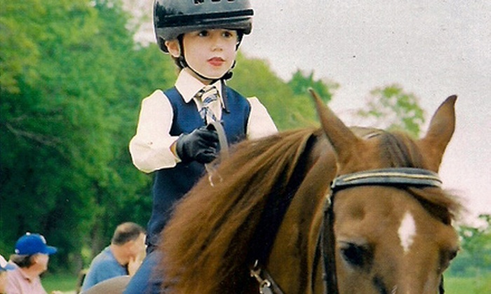 Timbermist Farm - 291 Hwy: Two or Four Private Horseback-Riding Lessons at Timbermist Farm (Up to 55% Off)