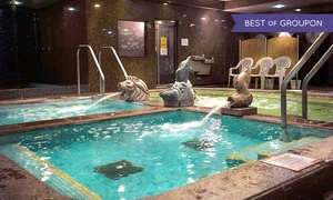 King Spa and Sauna- Chicago: Day-Spa Pass with Optional Access to Base Rock Room at King Spa & Sauna (Up to 42% Off)