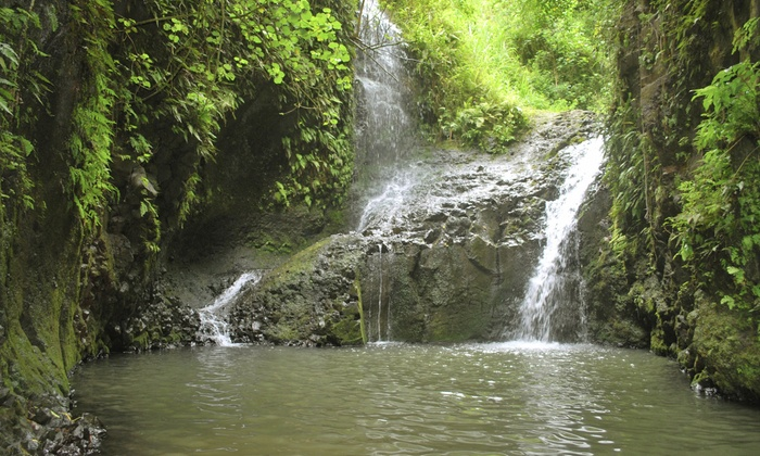 Value Venture Hawaii - Value Venture Hawaii: Maunawili Falls Tour for 2, 4, or 10 from Value Venture Hawaii (Up to 70% Off)