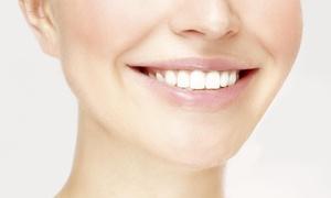 Pine Tree Dental: $39 for $376 Worth of dental exam at Pine Tree Dental