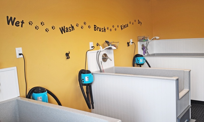 Hush Puppy's K9 Center - 5: $25 for $50 Worth of Pet Grooming — Hush Puppy's K9 Center