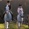 $10 for Horse Festival at The Graham Equestrian Center