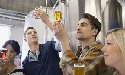 image for Beer Tasting and Brewing Course for Up to Four at The Mottly Brew (Up to 65% Off)