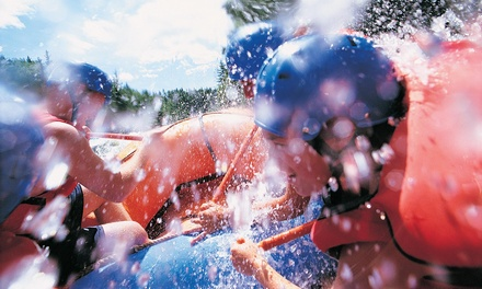 Half-Day Whitewater Rafting Trip for Two or Four from Monumental Expeditions LLC (Up to 51% Off)