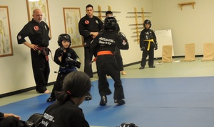 Otk Martial Arts: Four Weeks of Unlimited Martial Arts Classes at OTK Martial Arts (47% Off)