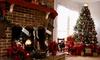 42% Off at Santa's Garden Christmas Trees
