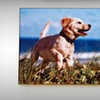 $39 for a Custom Wooden Photo Panel