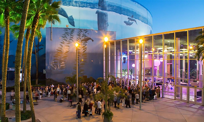 Ode to ella and gershwin in long beach ca groupon for Terrace theatre long beach