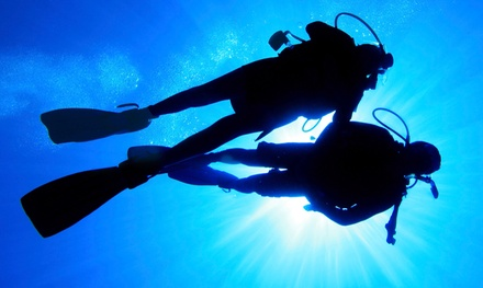 Basic Scuba Class or Open-Water Certification Class at Sea the World Scuba Center in Farmington Hills (50% Off)