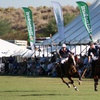 Up to 67% Off Bentley Scottsdale Polo Championships