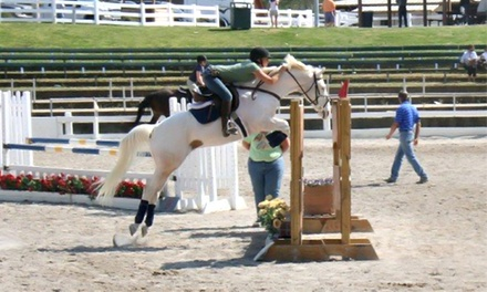 One, Two, or Three 60-Minute English Horse-Riding Lessons at Southwind Stables (Up to 54%)