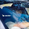 $25 for $100 Toward Windshield Replacement