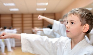 Tom Vo's Taekwondo Academy: $29 for Martial-Arts Classes and Private Lessons at Tom Vo's Taekwondo Academy ($180 Value)