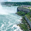 Niagara Falls Wyndham Hotel with Wine Tastings