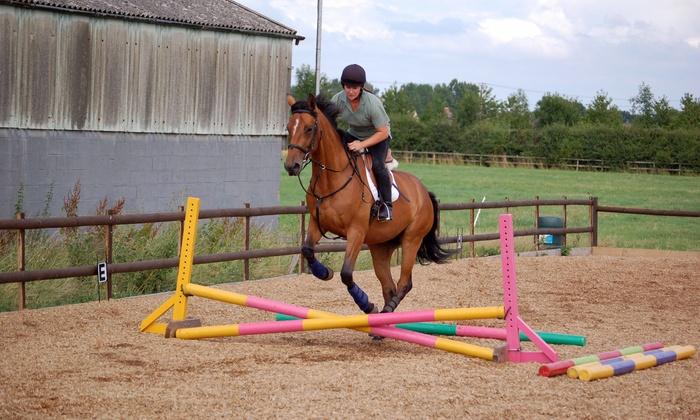 Prestige Pets At Gaston Farm - Boxford: Two Horseback-Riding Lessons at Prestige Pets @ Gaston Farm (55% Off)