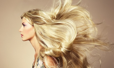 Women's Haircut with Optional Partial Highlights or Single-Process Color at The Finest Salon (Up to 57% Off)