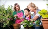 Bloom Nursery - Bloom Nursery: $15 for $30 Worth of Plants at Bloom Nursery in Southwest Ranches