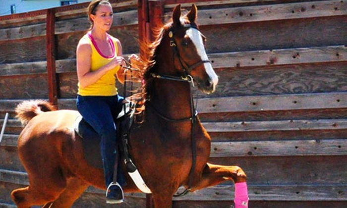 Longview Stables and Riding Academy - East Arapahoe: Private or Group Horseback-Riding Lessons at Longview Stables and Riding Academy in Aurora (Up to 53% Off)
