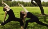 Shri Life Yoga Studio - Ballenisles: Five Yoga Classes, One Month of Unlimited Classes, or an Eight-Class Beginner's Series at Shri Life Yoga (Up to 69% Off)