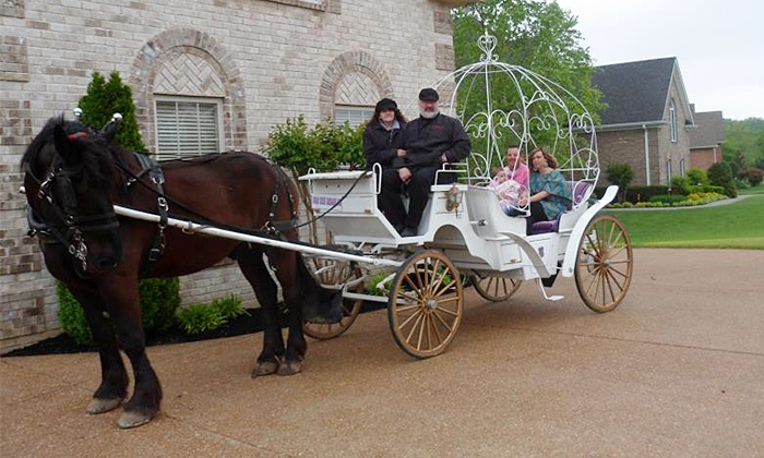 Sugar Creek Carriages - Downtown Nashville: $35 for a Private Downtown Carriage Ride for Up to Six from Sugar Creek Carriages ($70 Value)