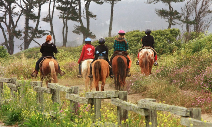 Sea Horse Ranch - Half Moon Bay: $99 for a Saturday Horsemanship Camp for One Child Age 7–16 at Sea Horse Ranch ($175 Value)